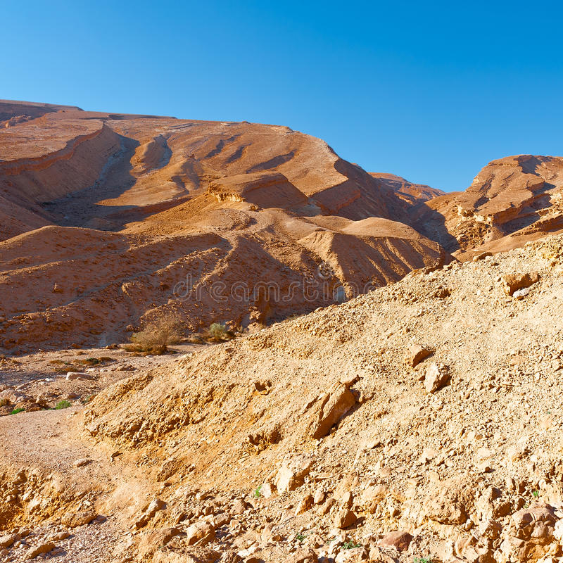 Rocky Hills. Of the Negev Desert in Israel royalty free stock images