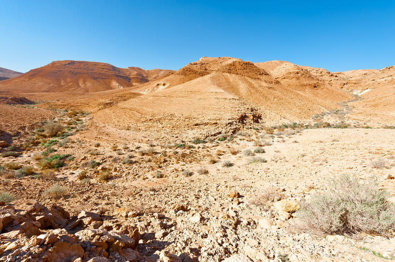 Rocky Hills. Of the Negev Desert in Israel royalty free stock photos
