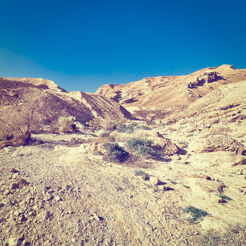 Rocky Hills. Of the Negev Desert in Israel stock photos