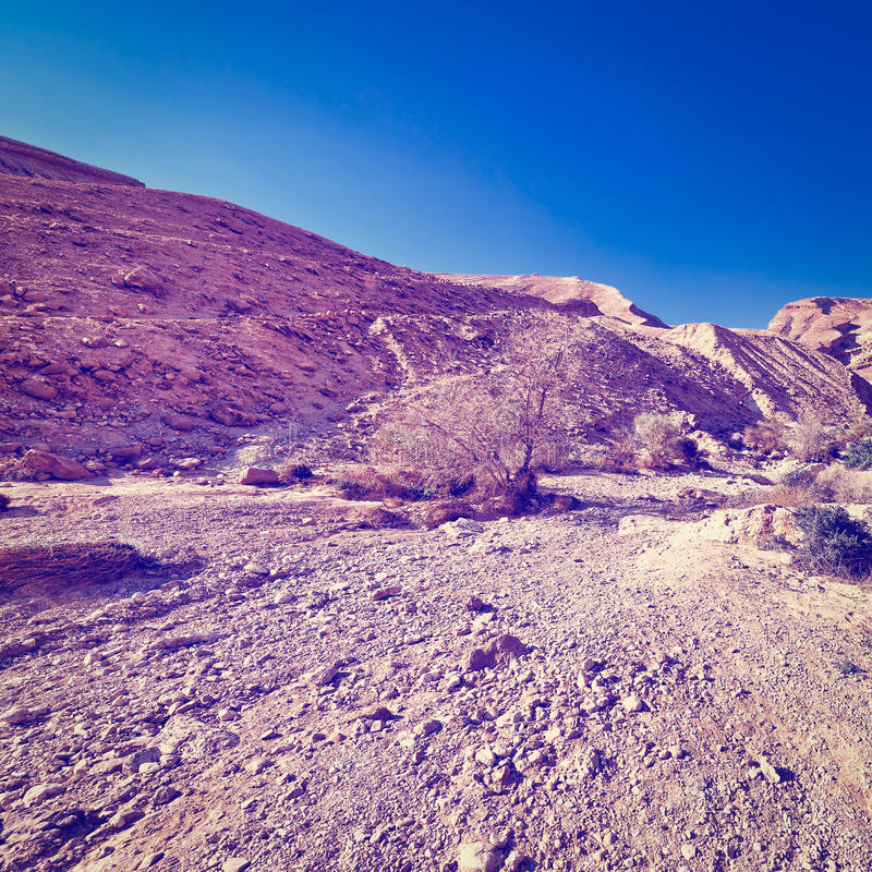 Rocky Hills. Of the Negev Desert in Israel, Instagram Effect royalty free stock photos