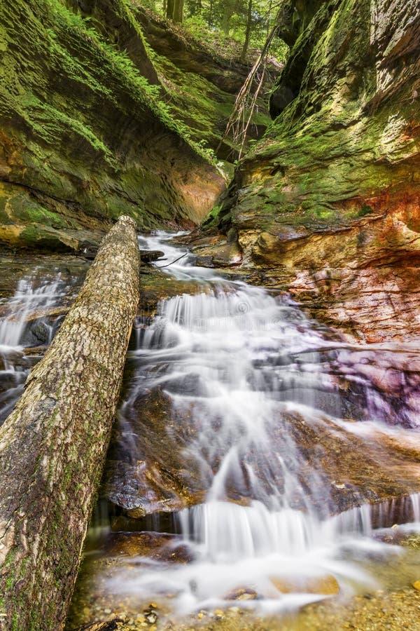 Rocky Hollow Waterfall arkivbild