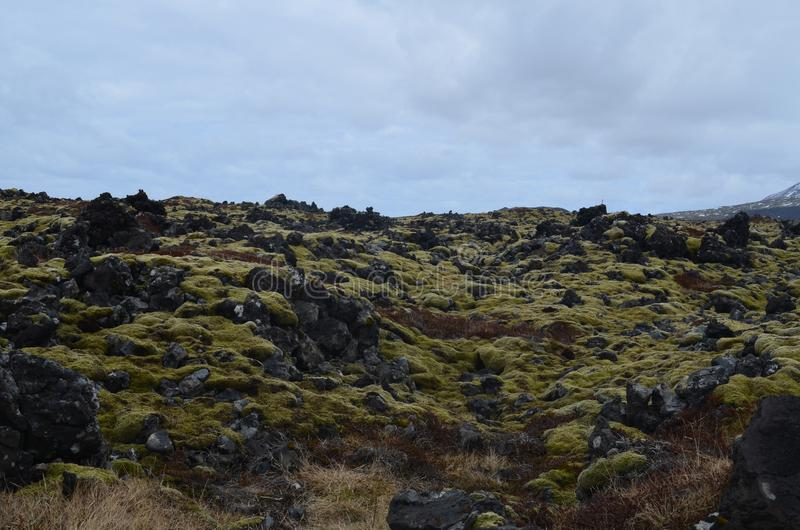 Rocky Icelandic lava field with green moss royalty free stock photos
