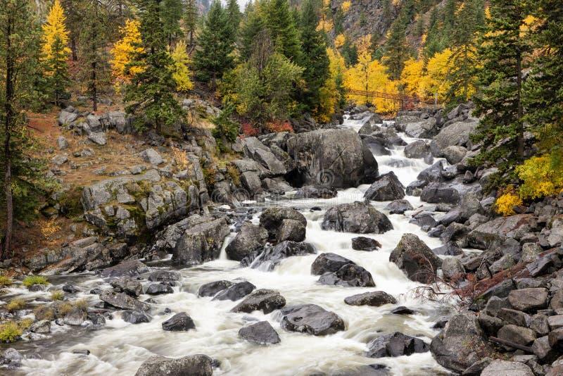 Rocky Icicle Creek royaltyfria foton