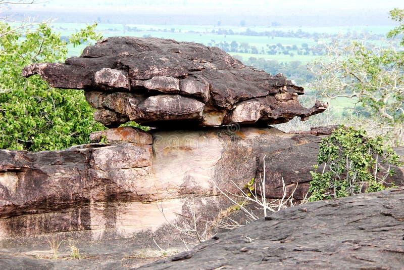 Rocky Land Tortoise royalty-vrije stock afbeelding