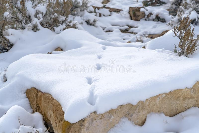 Rocky landscape with footsteps on the snow. A rocky landscape blanketed in a powdery sheet of snow on a sunny day in winter. Footsteps can be seen on the snow royalty free stock photography