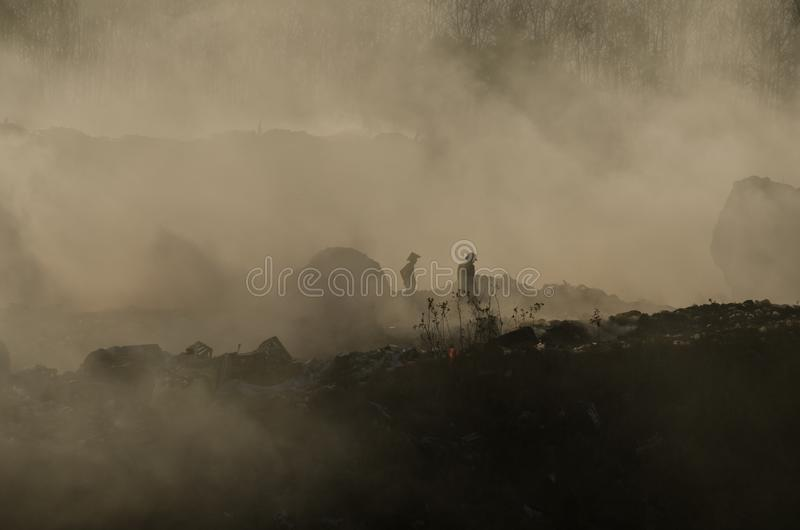 Rocky landscape in morning mist royalty free stock photos