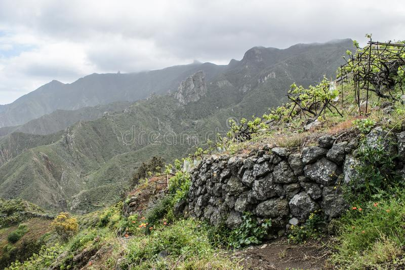 Rocky Landscape view and vineyard near Taganana vilage, Tenerife, Canary Islands stock images