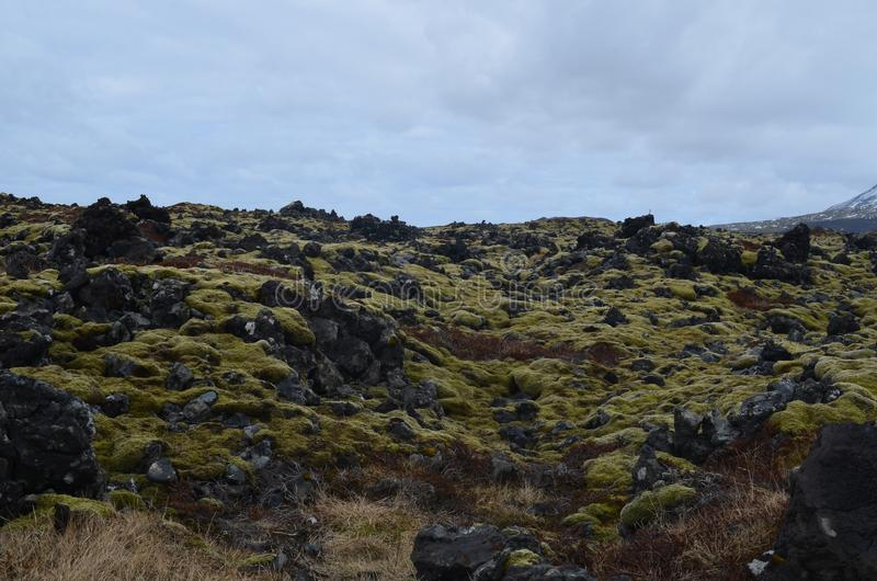 Rocky lava field with large volcanic rocks stock image