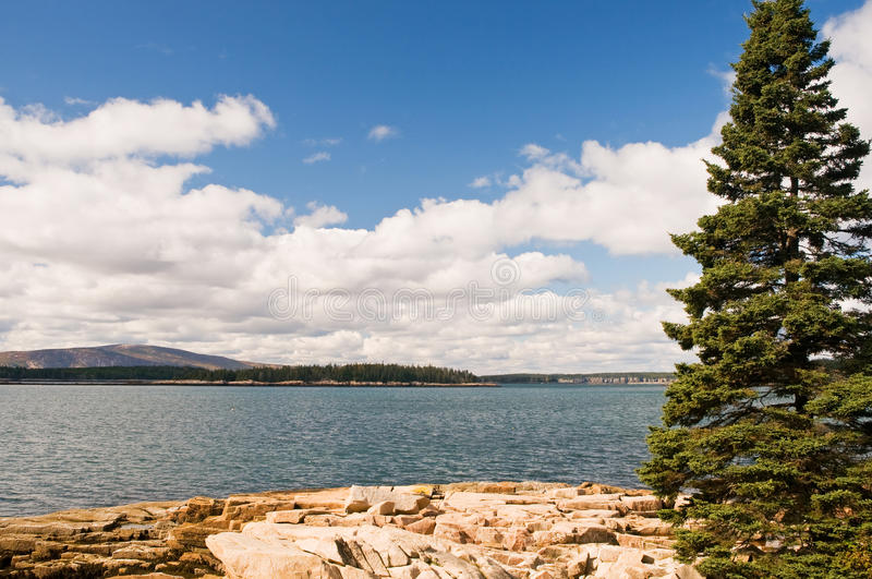 Download Rocky Maine coastline stock image. Image of scenery, natural - 11367459