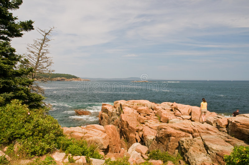 Rocky Maine coastline royalty free stock images