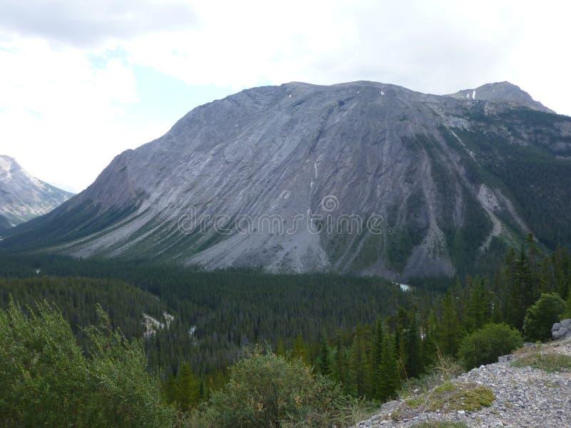 Rocky Mountain foto de archivo