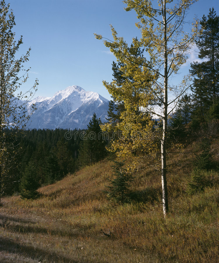 Free Rocky Mountain Autumn British Columbia Canada Stock Photography - 2696842