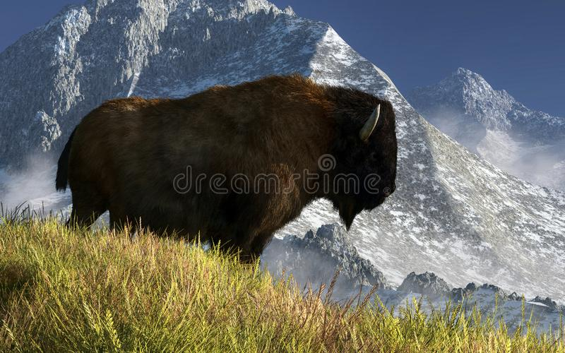 Rocky Mountain Buffalo stock illustratie