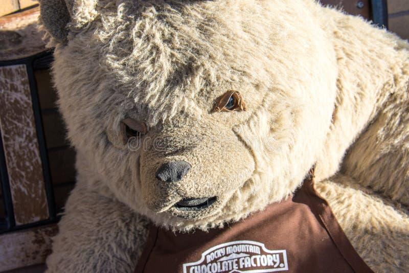 Rocky Mountain Chocolate bear mascot named Truffles the Teddy Bear stock photography