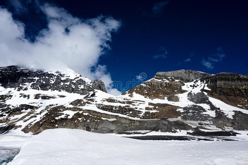 Rocky Mountain filled with ice and snow contrasting a bright blue sky. Canada`s Rockies mountain filled with ice and snow during a summer day contrasting with a royalty free stock photos