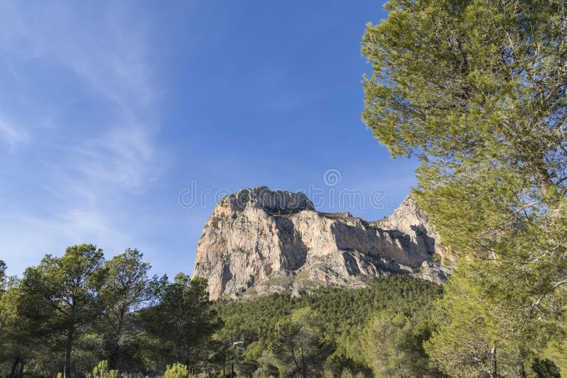 Rocky mountain framed by pine trees in the foreground 3. Rocky mountain framed by pine trees in the foreground. Mediterranean landscape. Blue sky with clouds stock photography