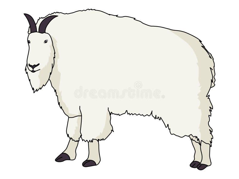 Rocky Mountain Goat-illustratievector royalty-vrije illustratie