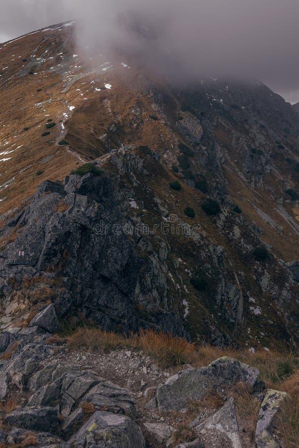 Rocky Mountain Hills em Eslováquia foto de stock