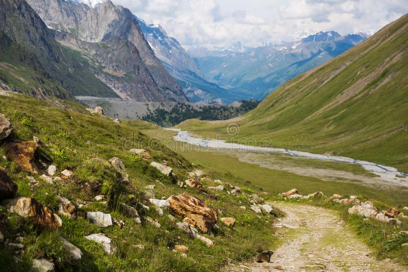 Rocky Mountain Landscape with Marmot on Mont-Blanc Trail.  stock images