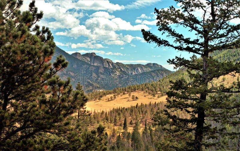 Rocky Mountain National park-1 stock afbeeldingen