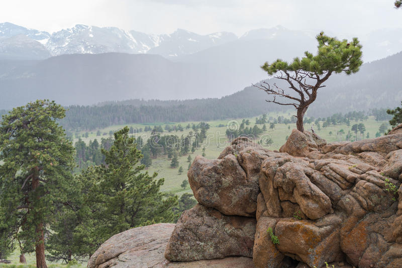 Rocky Mountain National Park royalty-vrije stock fotografie