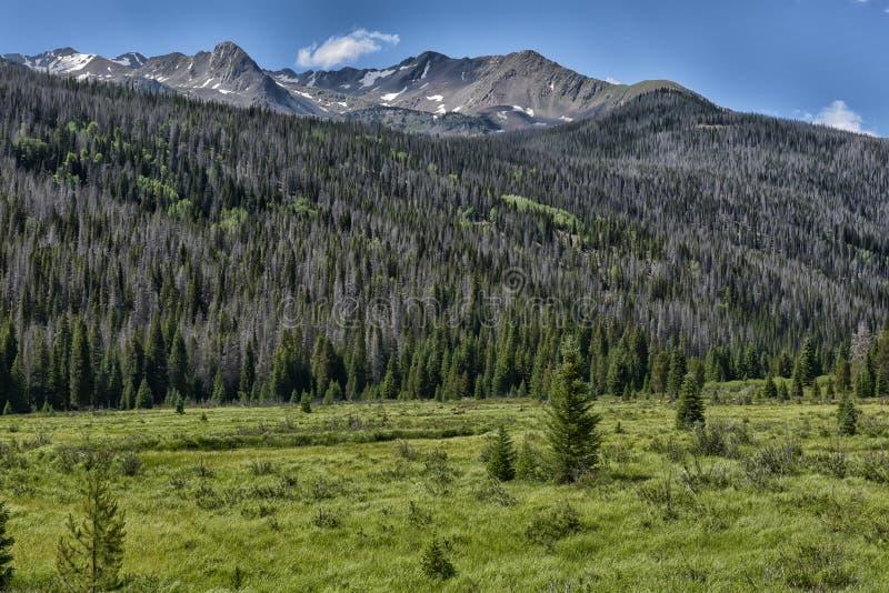 Rocky Mountain National Park lizenzfreie stockbilder