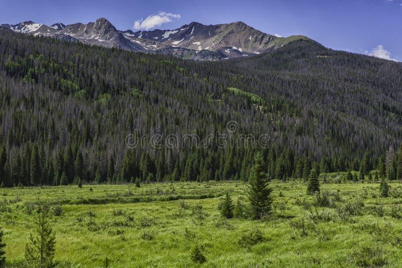 Rocky Mountain National Park stockfotografie