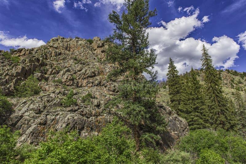 Rocky Mountain National Park lizenzfreie stockfotos
