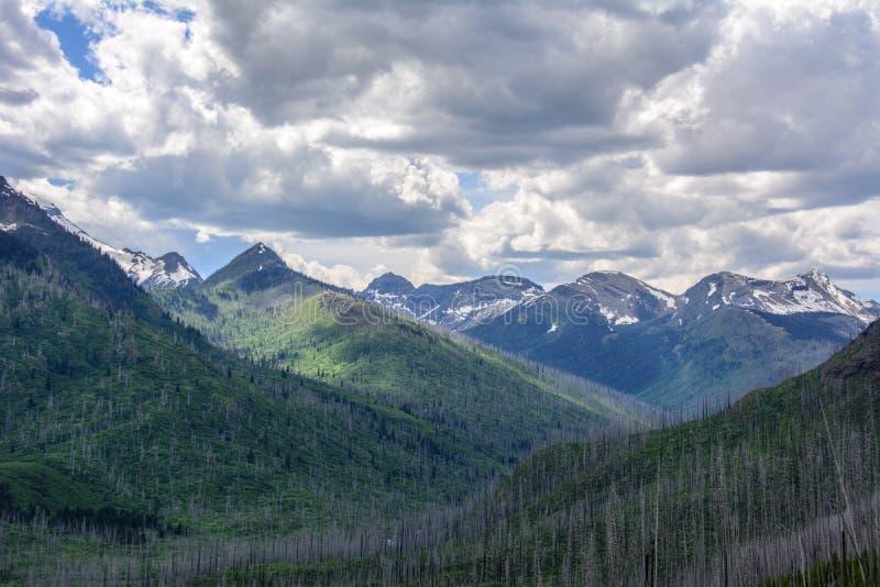 Rocky Mountain no parque nacional de geleira, Montana EUA fotos de stock royalty free