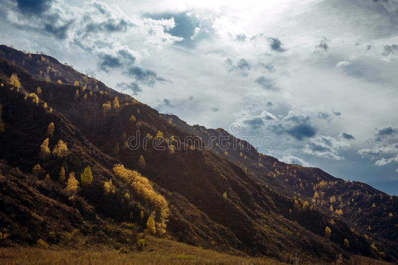 Rocky mountain overgrown with yellow trees against the cloudy autumn sky is illuminated by the rays of the setting sun. Majestic. Fall landscape, close-up stock photos