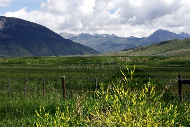 Rocky Mountain Range royalty free stock images