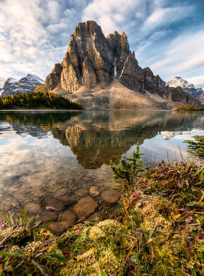 Rocky mountain reflection on Cerulean lake in Assiniboine provincial park royalty free stock images