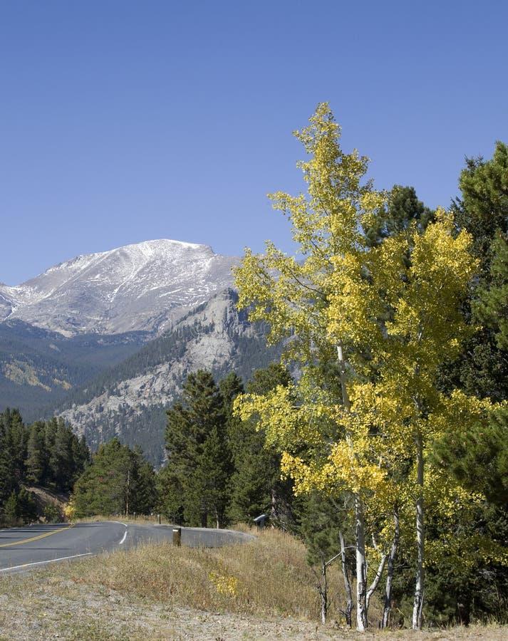 Rocky Mountain Road, Colorado Royalty Free Stock Photos