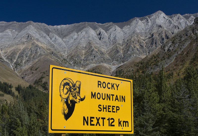 Rocky Mountain Sheep Sign stock images