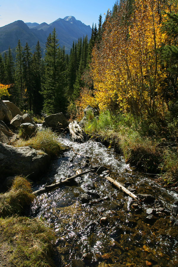 Download Rocky Mountain stream stock photo. Image of mountain, vertical - 3359346