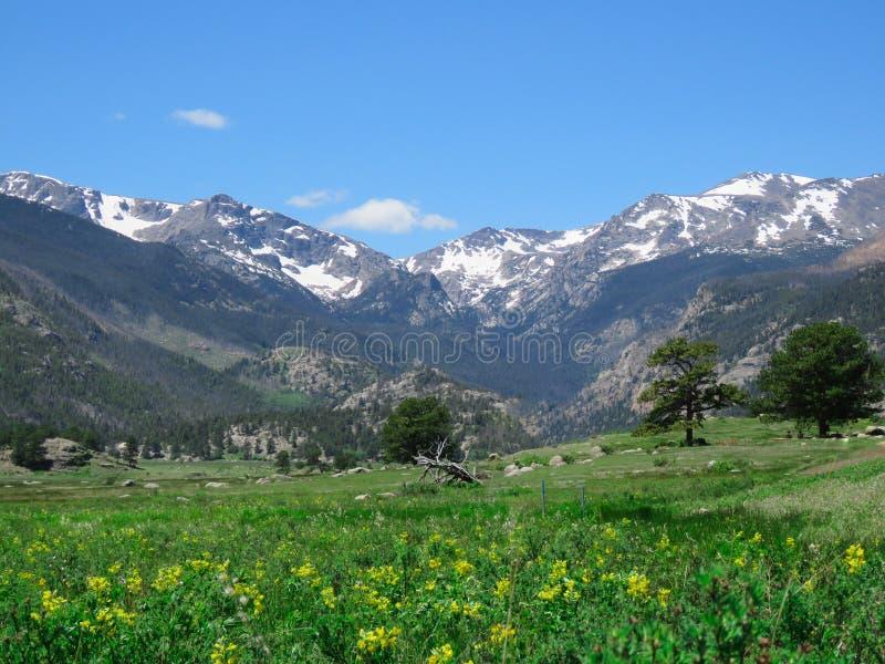 Rocky Mountain Summer Day photographie stock libre de droits