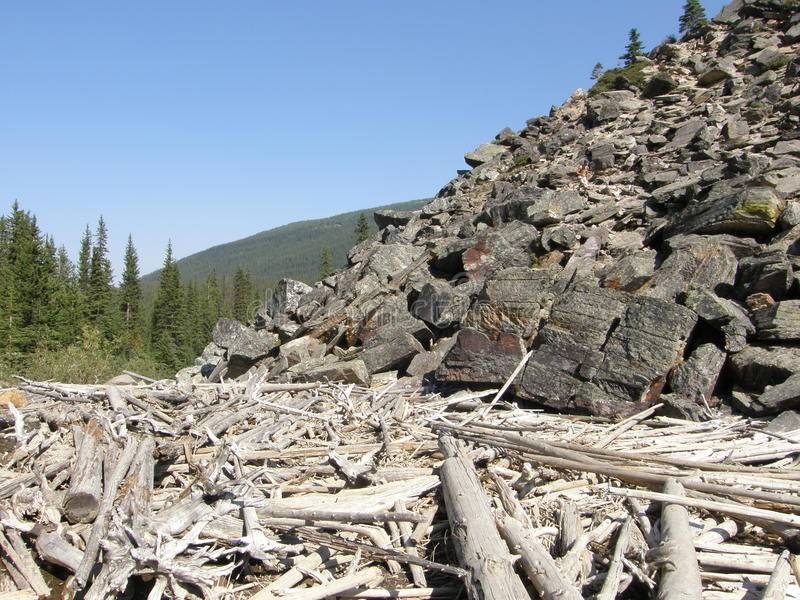 Download Rocky Mountains In Alberta, Canada Stock Photo - Image: 10769024
