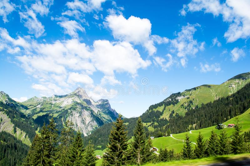 Rocky mountains and green grass and trees with blue skies and clouds Trees stock photos