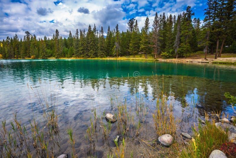 Rocky Mountains, Jasper National Park stock foto's