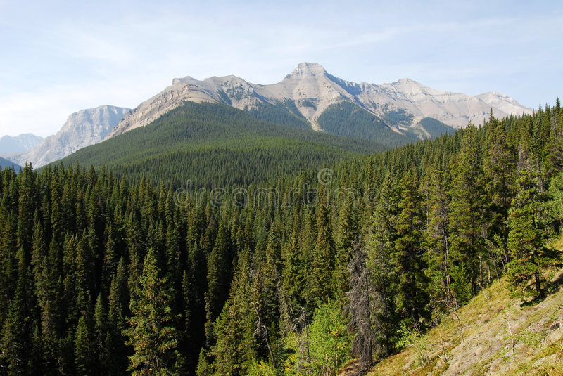 Rocky mountains landscape stock photos
