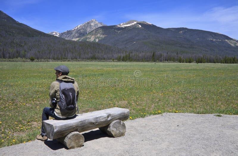 Rocky Mountains manfotvandrare royaltyfri foto
