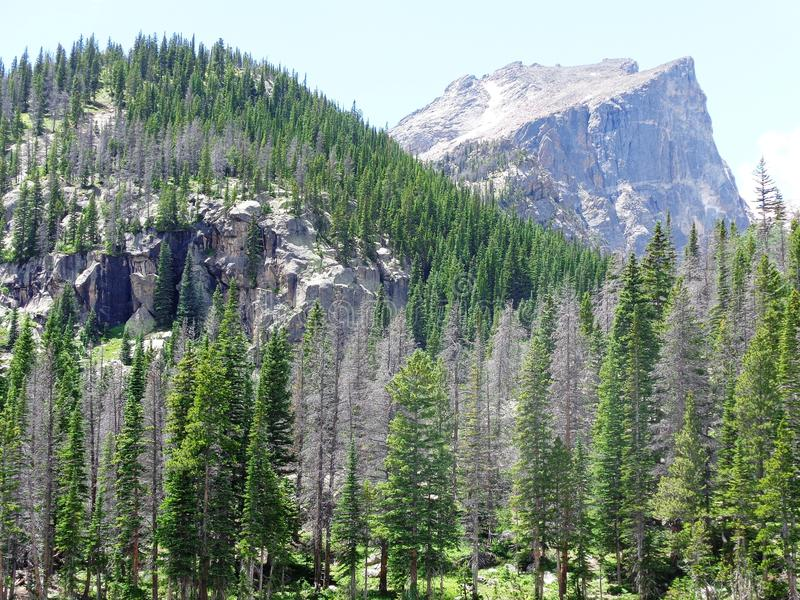 Rocky mountains national park stock photo
