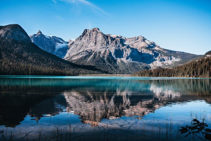 Rocky Mountains refletiu em Emerald Lake foto de stock royalty free