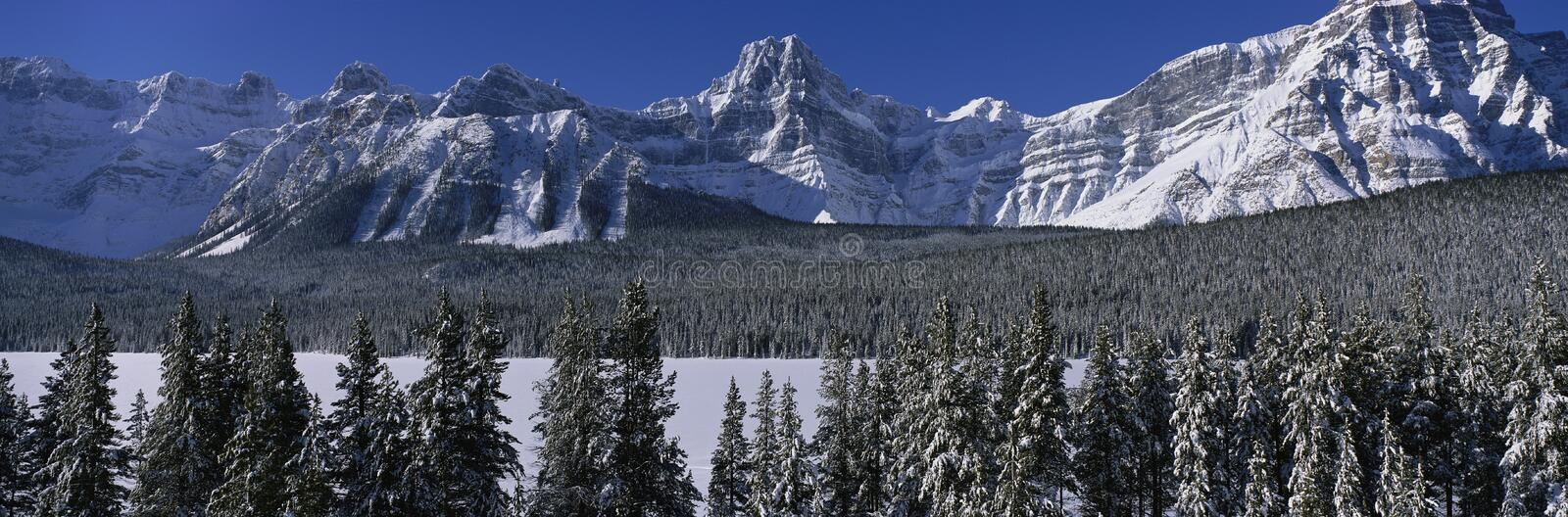 Rocky Mountains in winter, Canada stock photography