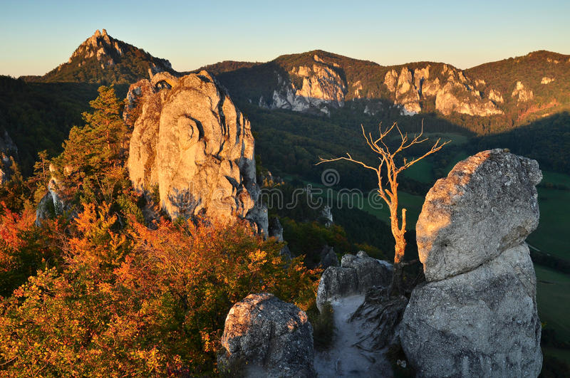 Download Rocky nature scenery stock image. Image of forest, rock - 21882157