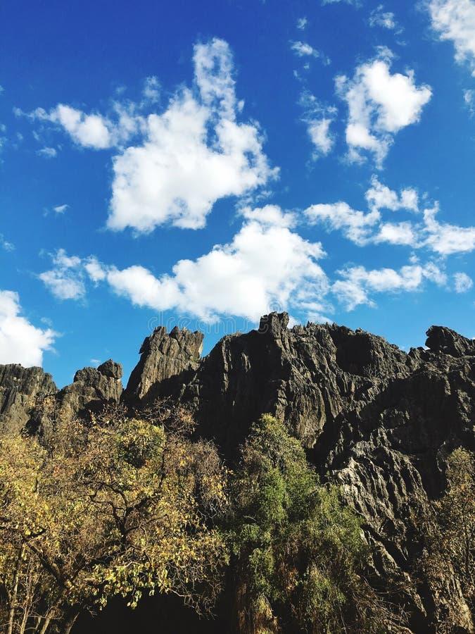 Rocky Outback stockbild