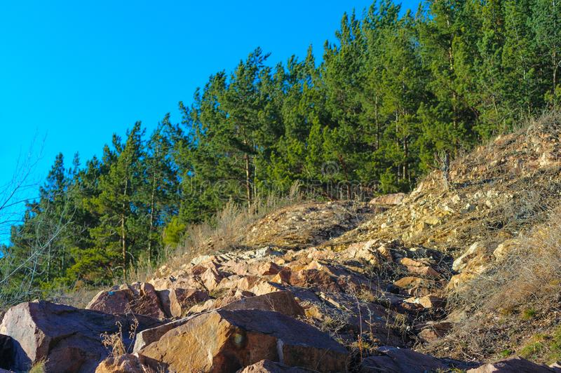 The rocky path rises to the coniferous forest stock photos
