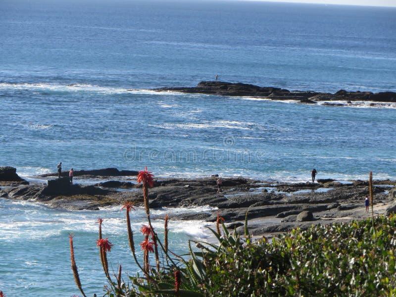 Rocky Points e il Tidepools della spiaggia scenica di Laguna fotografie stock libere da diritti