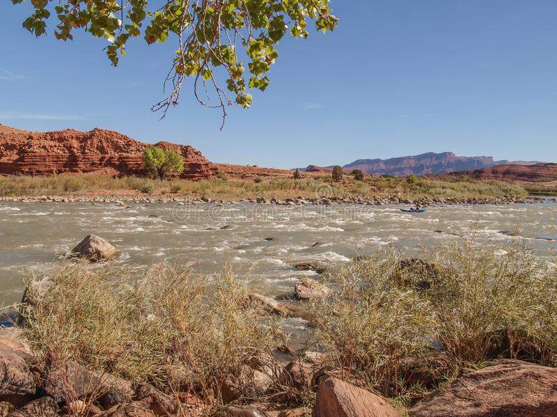 Rocky Rapids on the Colorado River. A popular rafting and kayaking area near Moab, Utah, this section of the Colorado River known as Rocky Rapids provides royalty free stock photo
