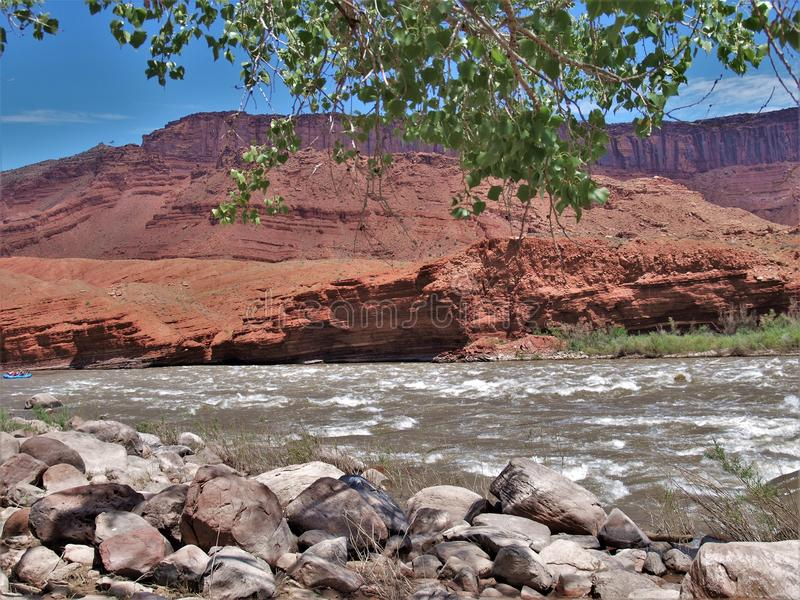 Rocky Rapids. A popular rafting and kayaking area near Moab, Utah, this section of the Colorado River known as Rocky Rapids provides outdoor enthusiasts with a royalty free stock photo